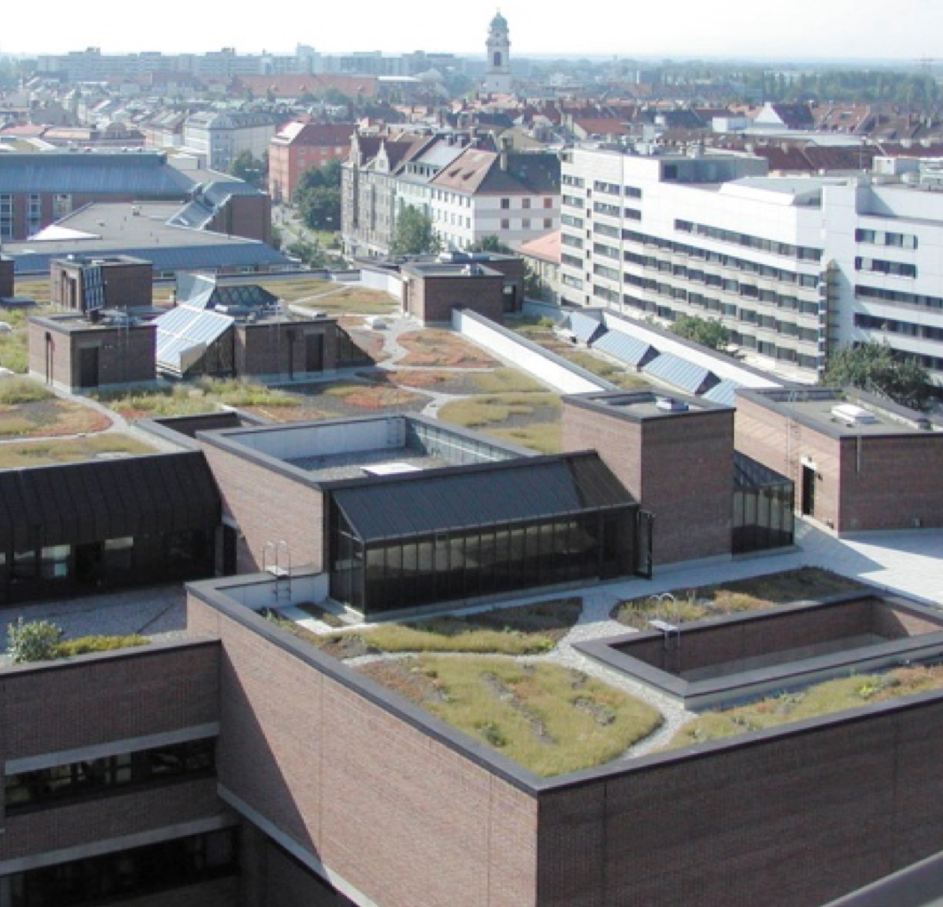 Roof details – Green roofs